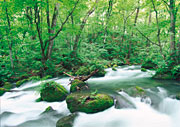 Sehenswürdigkeiten Bayerischer Wald